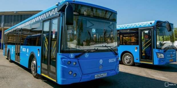 Автобусы. Фото: mos.ru