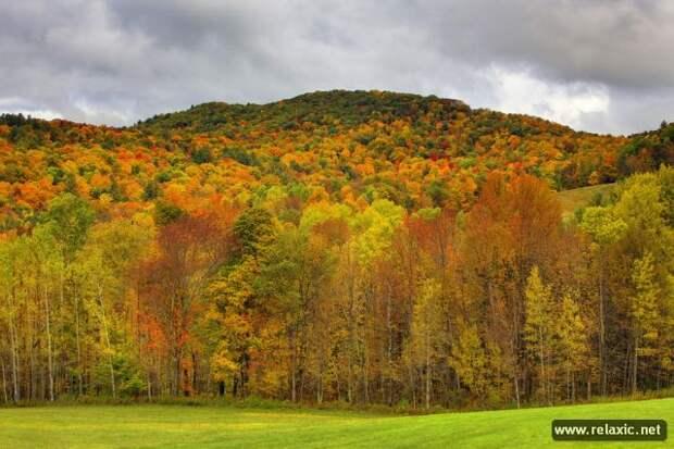 Природа Новой Англии (21 фото)