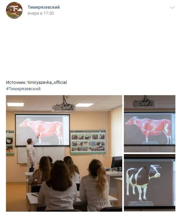 Фото дня: в Тимирязевском изучат тонкости ветеринарии по 3D-корове