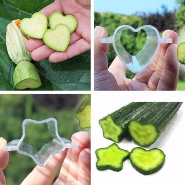 формы для выращивания овощей и фруктов
