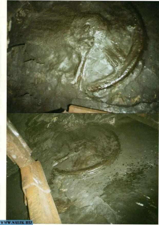 3 необычные находки, обнаруженные на территории России.