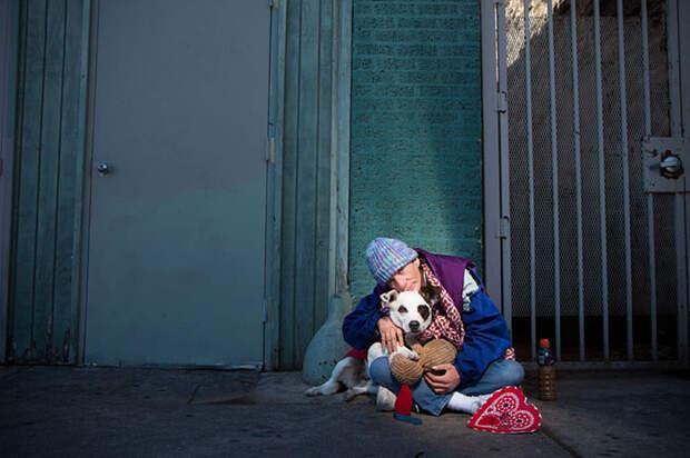 37. Бездомная Линн и Чарли бездомный, любовь, собака
