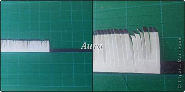 Мастер-класс Квиллинг Квиллинг на кальке MK анемоны Бумага Бумажные полосы фото 7