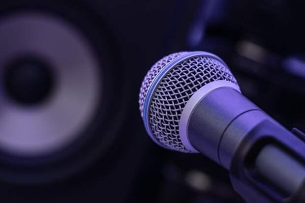 Семейный центр в Куркине проведет мастер-класс по дикции и ораторскому искусству