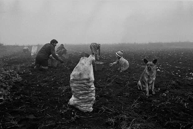 Фотограф Евгений Канаев: «Казань и казанцы в 90-е» 12