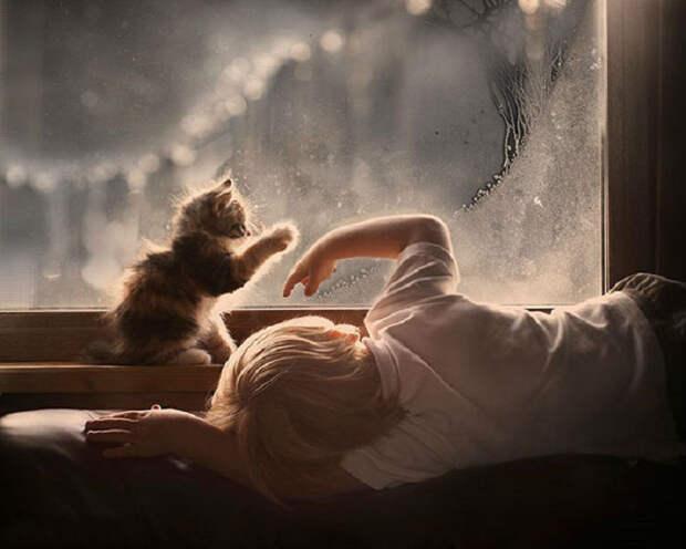 Как же здорово мечтать, когда дождь за окном.