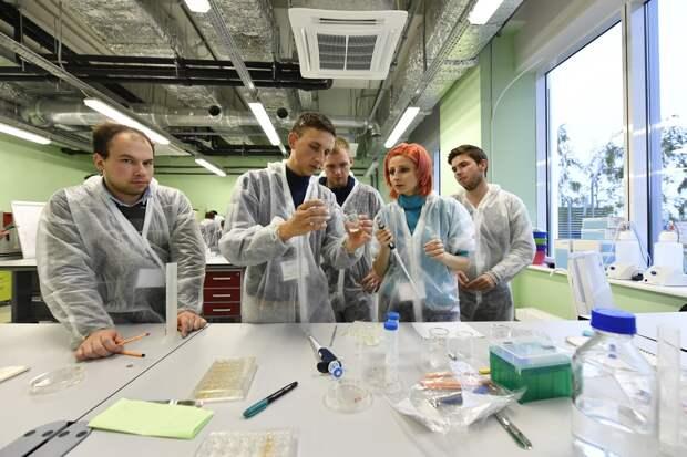 Дело пяти минут: российский экспресс-тест сможет обнаружить антитела к коронавирусу в кратчайшие сроки