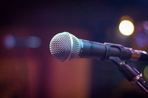 В Южнопортовом выступит вокальное трио «Элегия». Фото: Pixabay.com