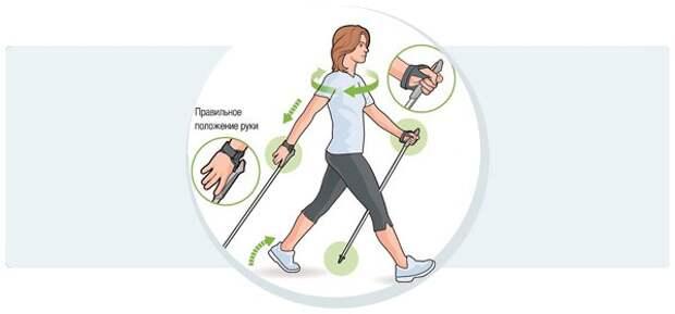 Обратите внимание на положение рук и ног при скандинавской ходьбе