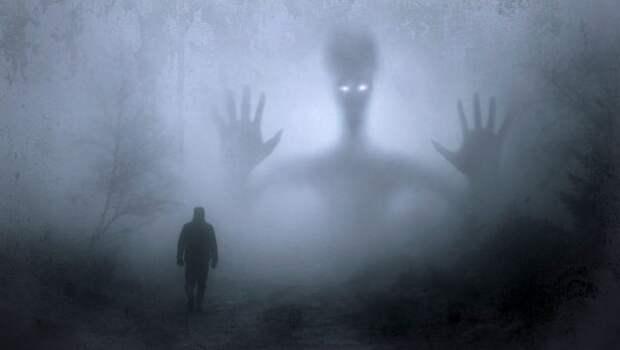 В Рязанской области сохранится сильный туман