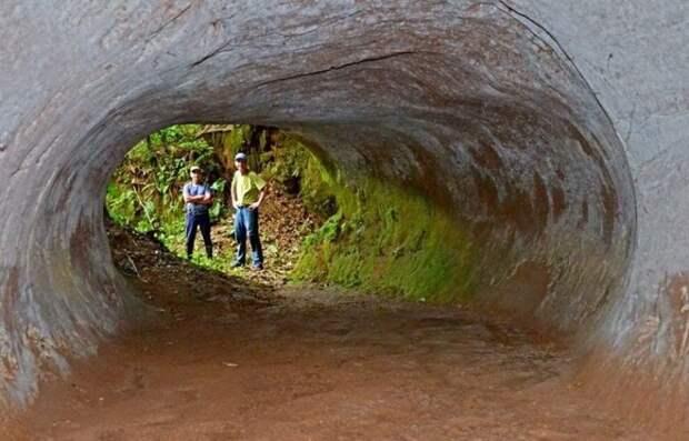 Кто автор этих поразительных пещер?