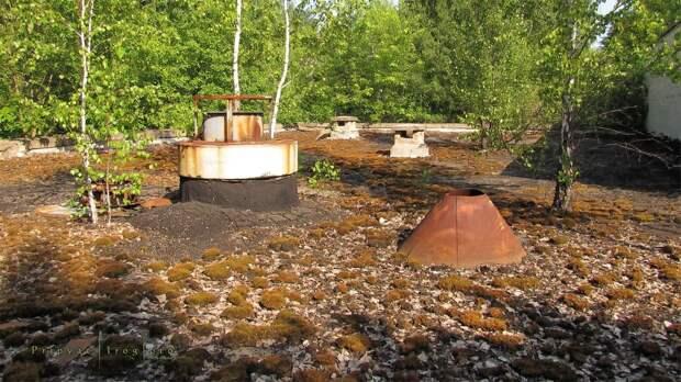 chnpp12 Оживающий Чернобыль