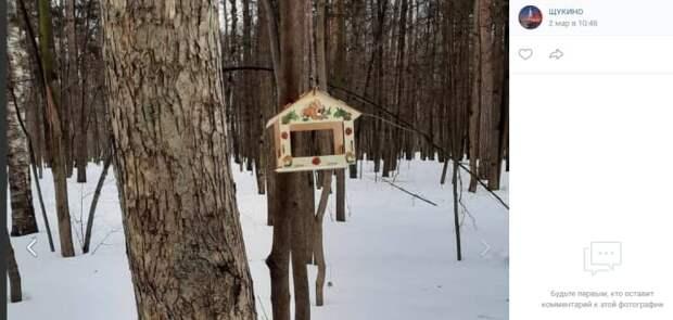 Необычные кормушки установили в Щукинском парке