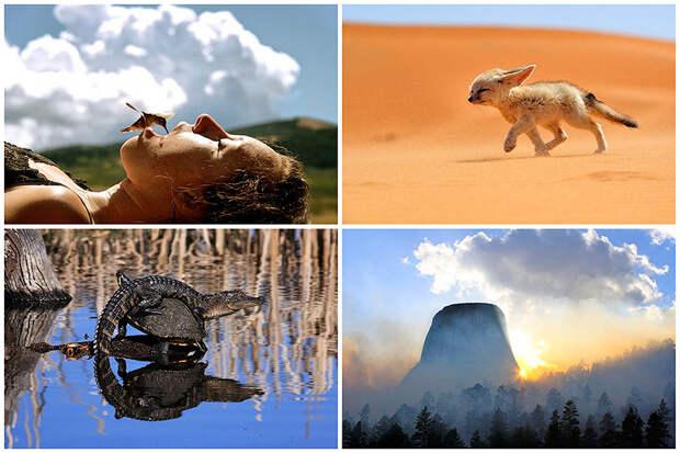 BIGPIC28 Фотоконкурс от журнала National Geographic Traveler 2013 (Часть 2)