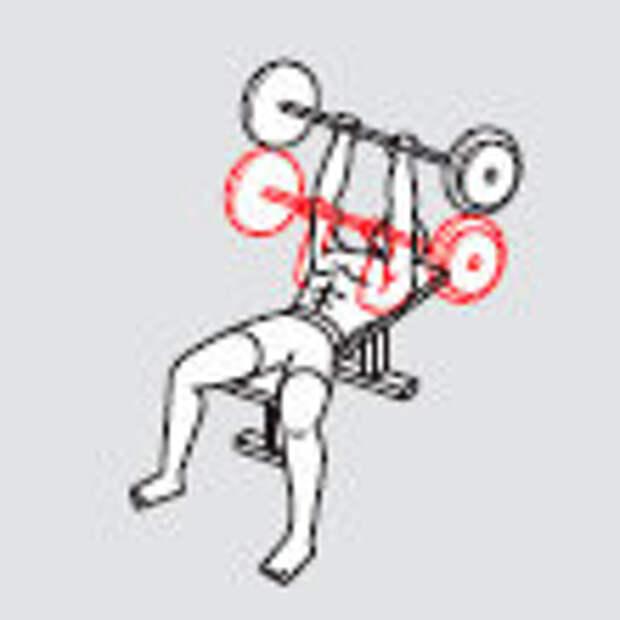 Фото 3 - Жми быстрее: 4 упражнения для быстрого набора мышечной массы
