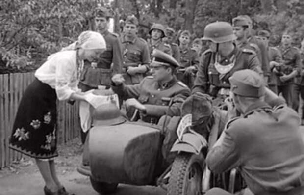 Зеленский официально возглавил неонацистов и борцов с «победобесием»?