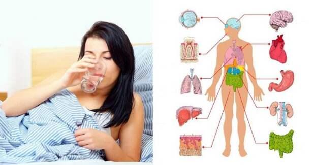 Пейте воду первым делом утром по этим 5 причинам!