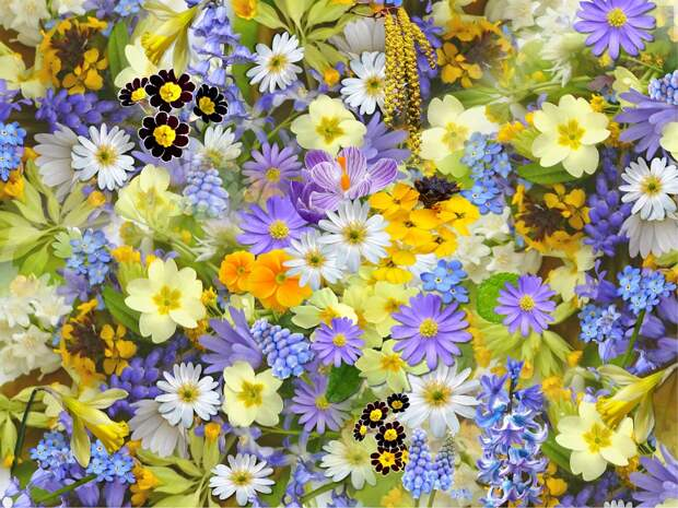Крио-шоу, спектакли, мастер-классы: фестиваль «Цветочный джем» пройдет в Лианозовском парке