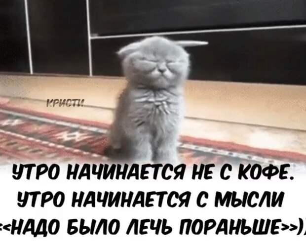 - Сынок, смотри: у меня 850 рублей, а у мамы 150 рублей...