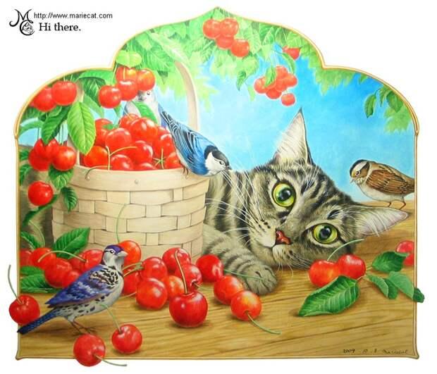 Ежедневный кот