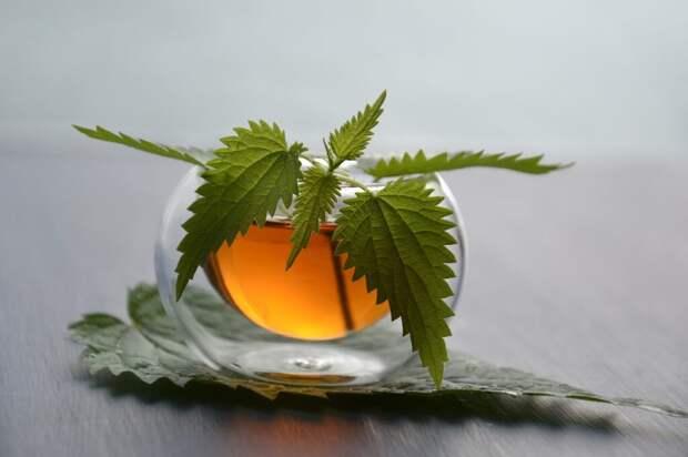 tea-3833598_1280-1024x682 Чай из лекарственных трав: мягкое средство от камней в почках