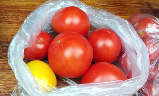 Летние помидоры хранятся всю зиму: кладем в пакет и замораживаем