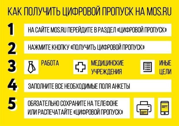 Инфографика. Фото: mos.ru