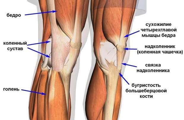 Почему болят колени + 6 упражнений против боли