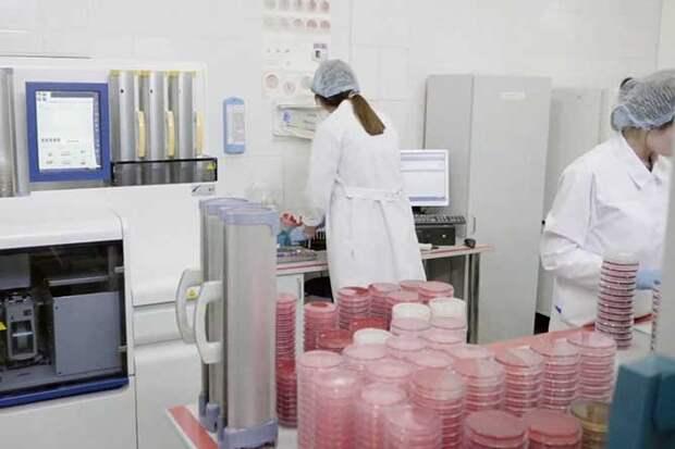 лаборатория медицинская