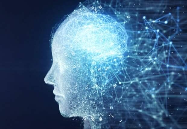 Учёные всё ещё пытаются разгадать, как работает мозг