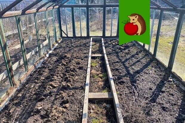 Чем я обрабатываю теплицу весной, чтобы в новом сезоне фитофтора не сгубила помидоры. Мои рецепты, которые работают