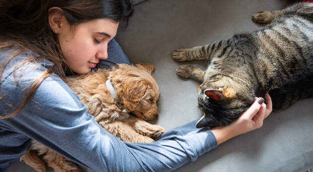 Животные в доме: какая от них польза?