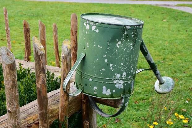 В жару более тысячи садоводов в Ижевске на две недели остались без воды