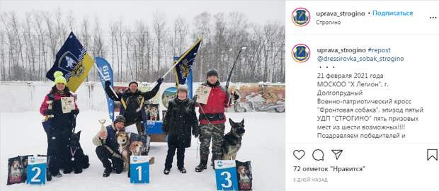 Дрессировщики из Строгина завоевали пять медалей на областном турнире
