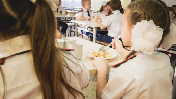 Ростовчане высказались против кормления учеников частных школ засчет бюджета