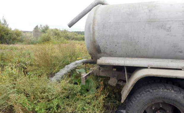 Загадили фекалиями шесть тысяч гектаров 18 новосибирцев