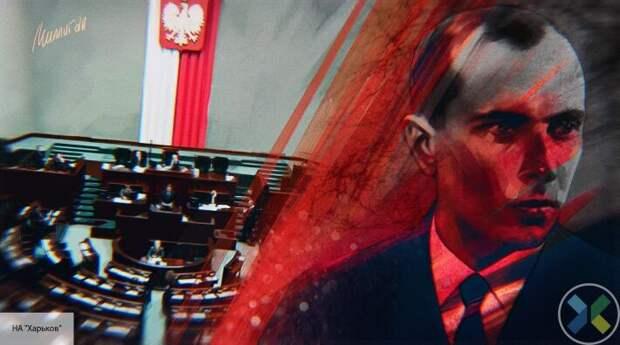 Поляки вступились за пенсионера, честно заявившего о преступлениях бандеровцев на Волыне