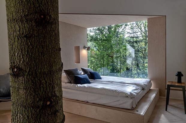6 фото офигенного дома на дереве, в котором согласятся пожить даже взрослые