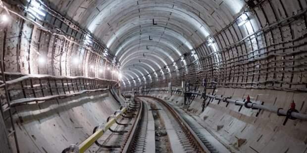 Собянин: Впервые в истории Москвы метро дойдет до аэропорта. Фото: Е. Самарин
