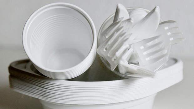 Вице-премьер предложила запретить в РФ пластиковую посуду