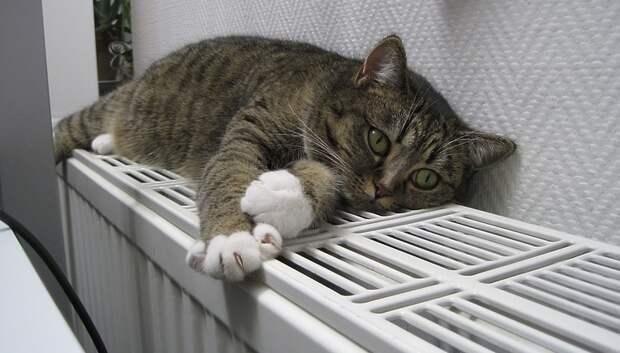 Тепло подали в жилые дома в половине муниципалитетов Подмосковья