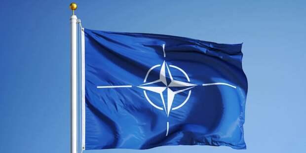 В Чехии рассказали о противнике НАТО