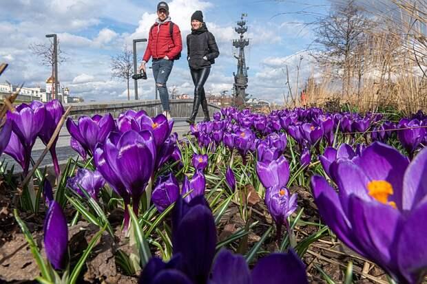Более половины россиян планируют провести майские каникулы дома