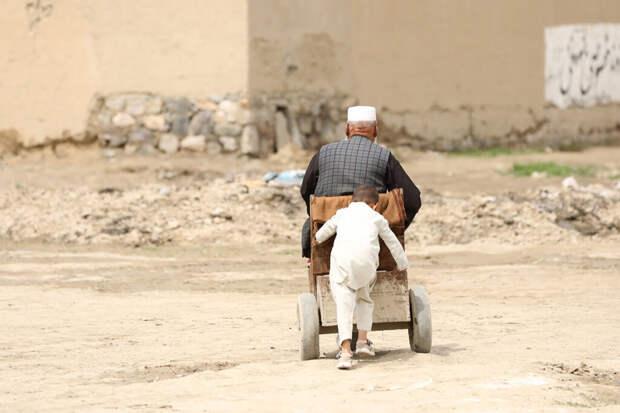 Девять мирных жителей погибли при ударе США по Кабулу