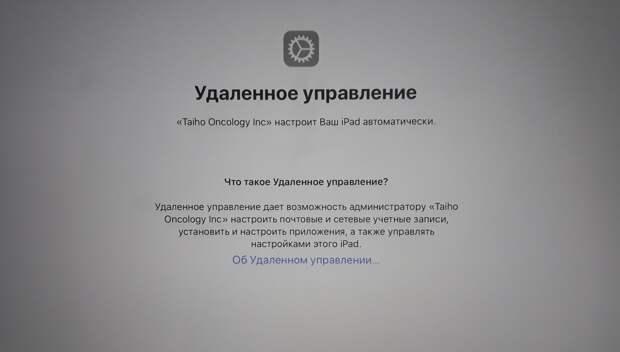Как за 75 тысяч рублей стать сотрудником американской компании?