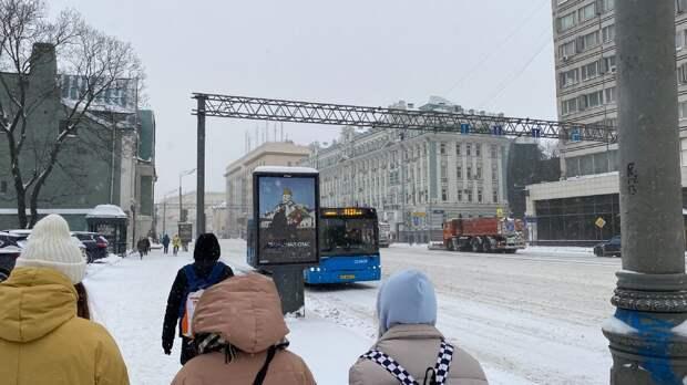 «Аптекарский огород» или где в зимней Москве можно встретить цефалотус?