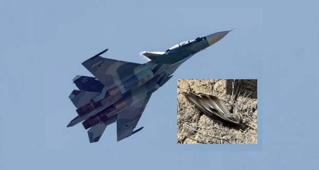 Столкновение со стаей птиц считают вероятной причиной крушения Су-30СМ в Балхаше