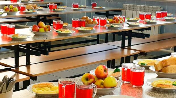 В России могут ужесточить систему госзакупок школьного питания