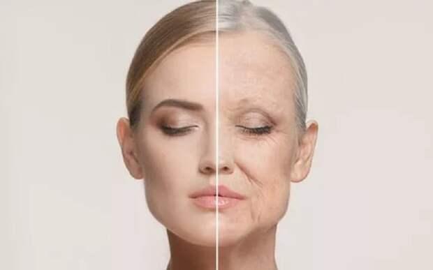 Израильские ученые нашли простой способ обратить старение вспять