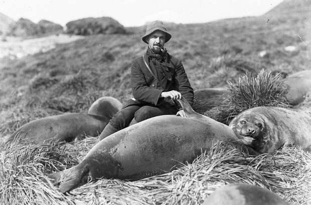 Первая Австралийская антарктическая экспедиция в фотографиях Фрэнка Хёрли 1911-1914 49